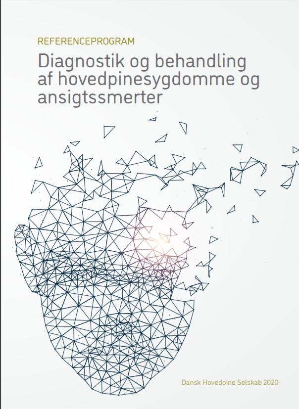 Referenceprogrammet</a> er publiceret i maj 2020 af Dansk og er en revideret udgave af Referenceprogrammet fra 2010.